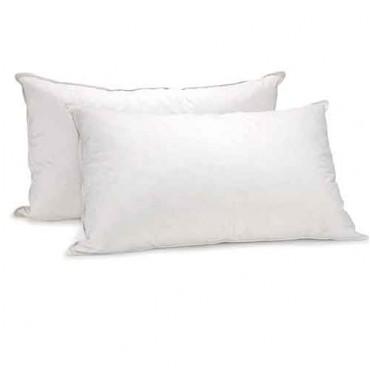Royal Comfort 鹅毛枕 两只 团购价只要$35!